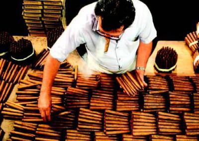 Sortierer Cigarrenfabrik